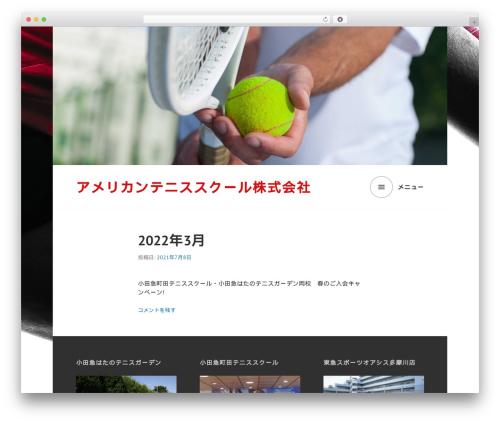 Edin WordPress theme download - aip-tennis.com