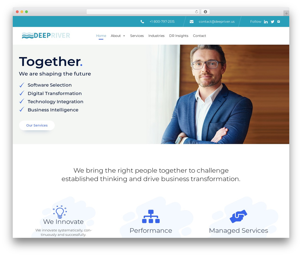 WP theme (VamTam) Consulting - deepriver.us