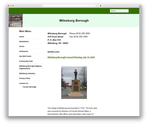 Make best WordPress theme - milesburgboro.com