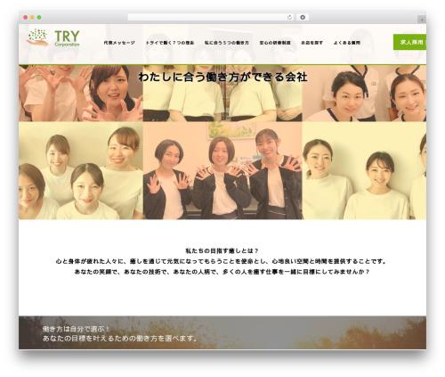 AGENT WordPress theme - try-iyashi.com