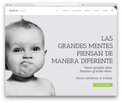 WordPress theme Avada - aplicamedia.net