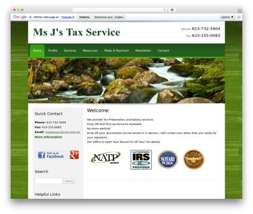 Customized template WordPress - msjstaxservice.com