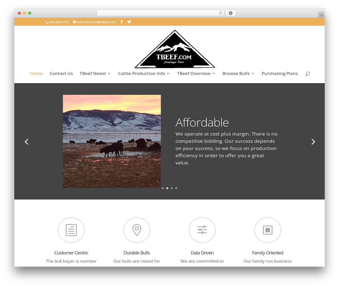 Divi WordPress theme by Elegant Themes - tbeef.com