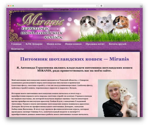 Responsive theme free download - miranis.ru