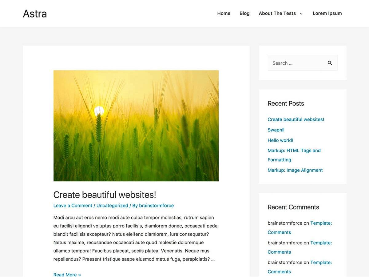 Astra Child WordPress website template
