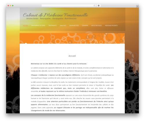 Polar Lite template WordPress free - cabinethomeo.ch