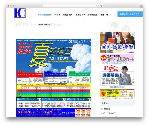AGENT best WordPress theme - kamosemi.com