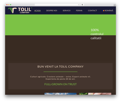 Theme WordPress jupiter - tolilcompany.com