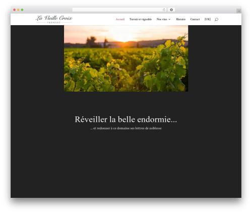 WordPress theme Divi - domainelavieillecroix.fr