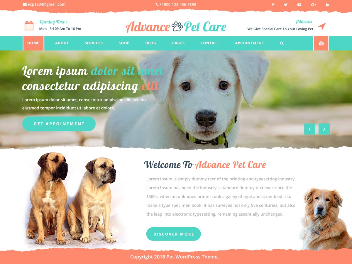 Advance Pet Care best WooCommerce theme