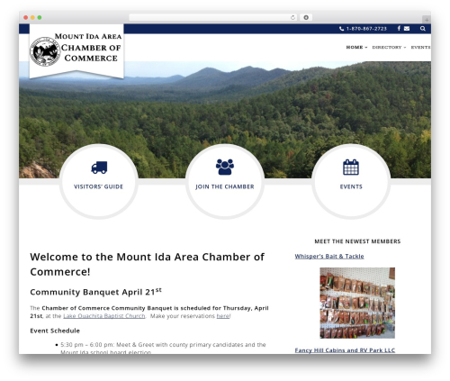 Chamber Beautiful WordPress template for business - mtidachamber.com