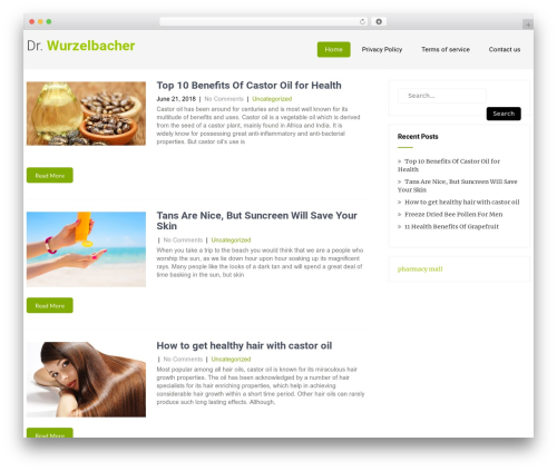 Eco Friendly Lite theme WordPress - joewurzelbacher2010.com