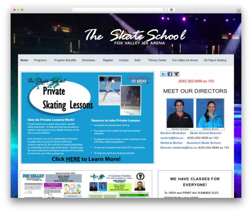 Make free WordPress theme - theskateschool.com