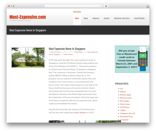 WordPress website template Fortune - most-expensive.com