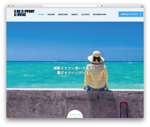 AGENT template WordPress - trv-support.com