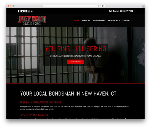 Small Business Blueprint Theme company WordPress theme - joeybond.com