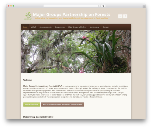 Template WordPress Earth - mgp-forests.org