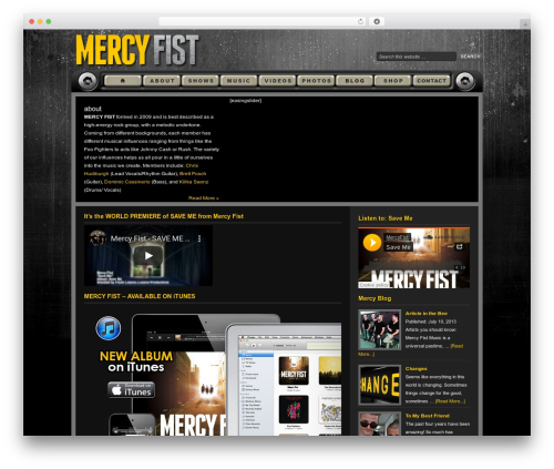 WordPress instagram-picture plugin - mercyfistmusic.com
