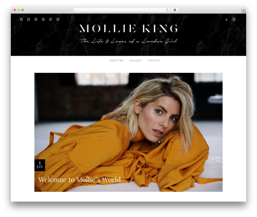 Allure WordPress template - mollieking.com