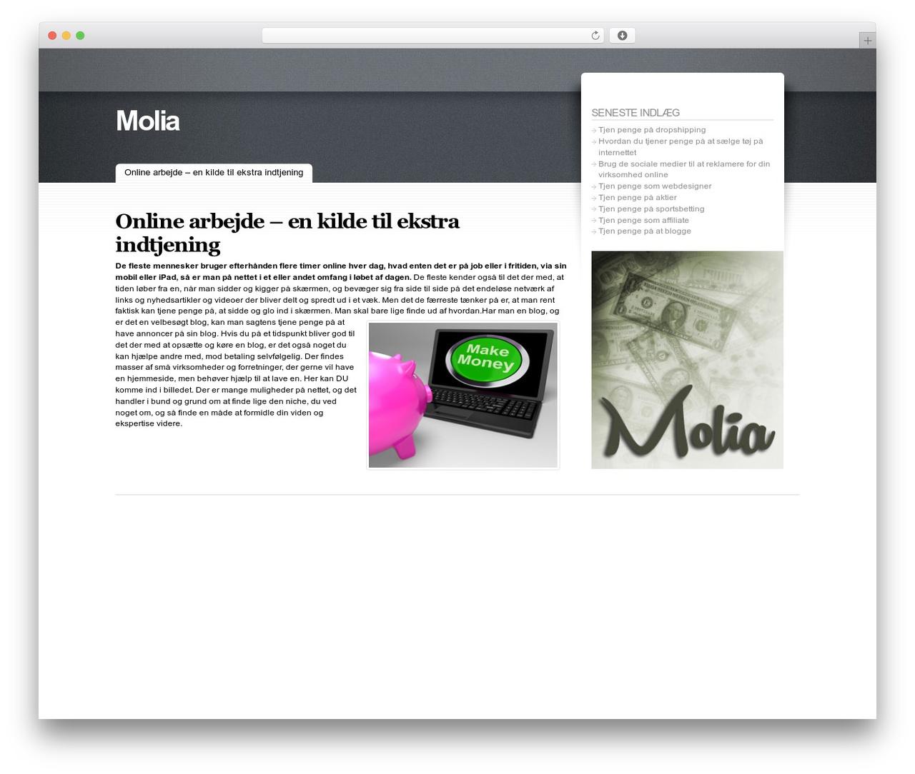 WordPress theme Fusion - molia.dk