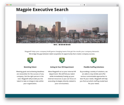 Make WordPress website template - magpiesearch.net