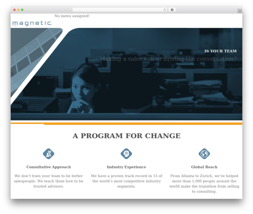 WordPress theme DP Blend - magneticservices.net