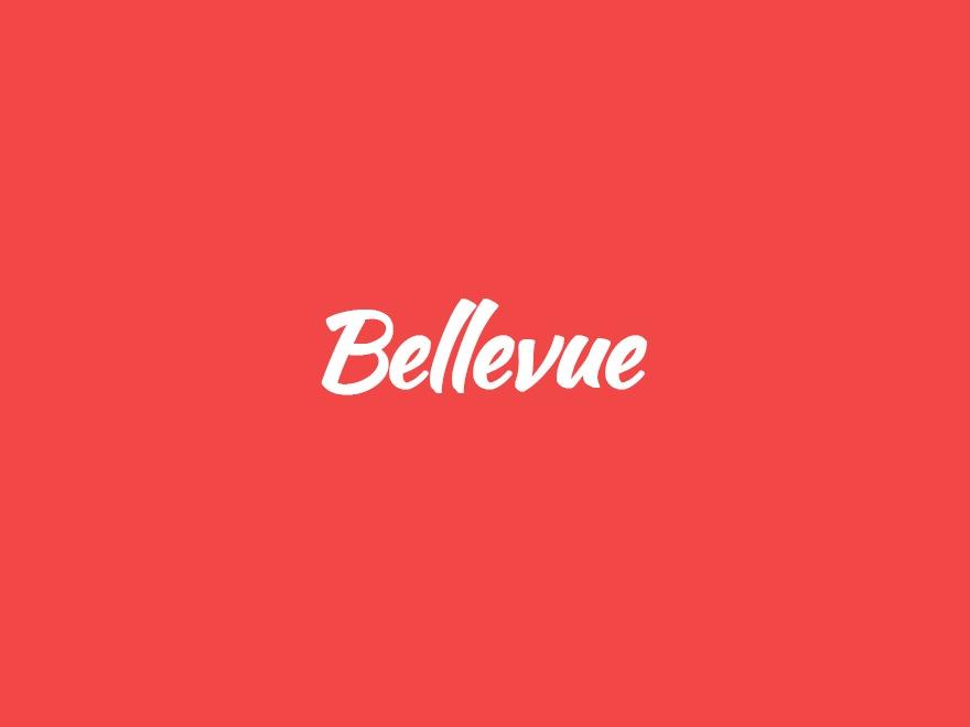 Bellevue | Shared By Themes24x7.com WordPress blog template