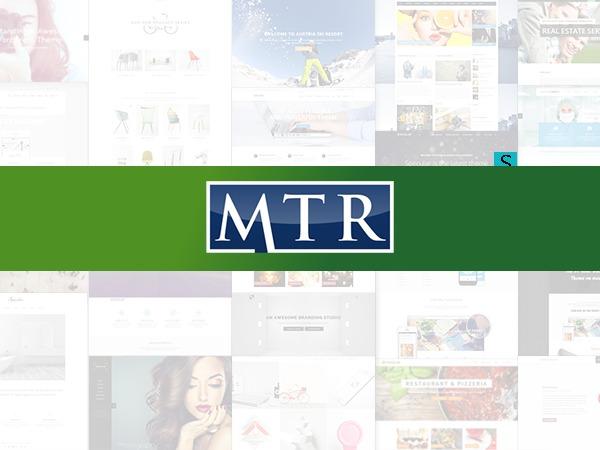 Michigan Tax Problems WordPress website template