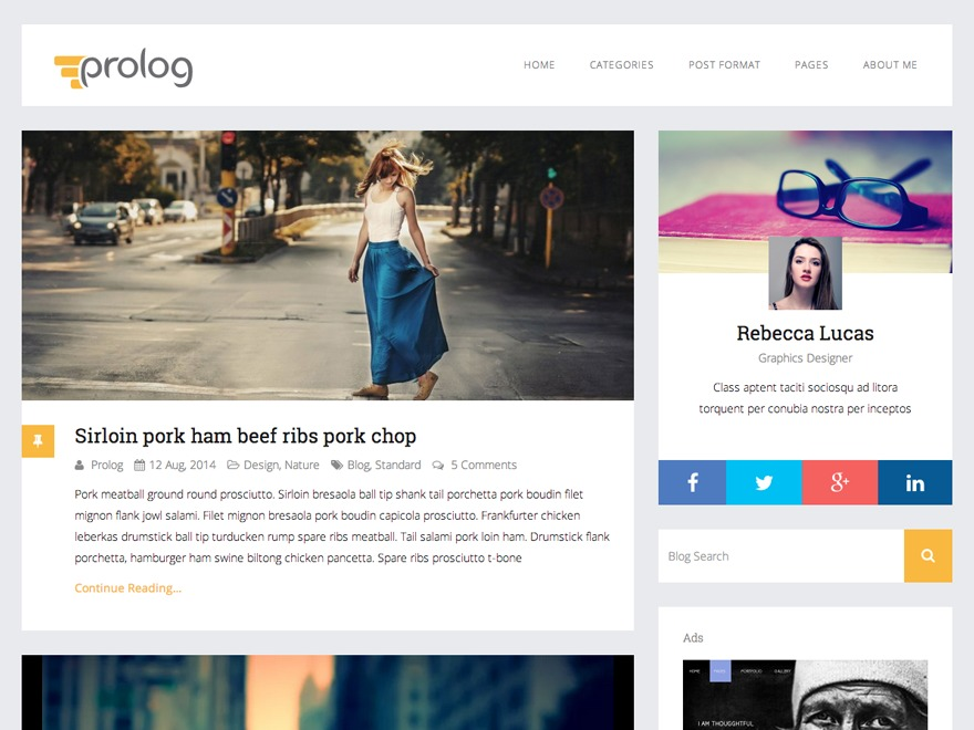 Best WordPress theme Prolog