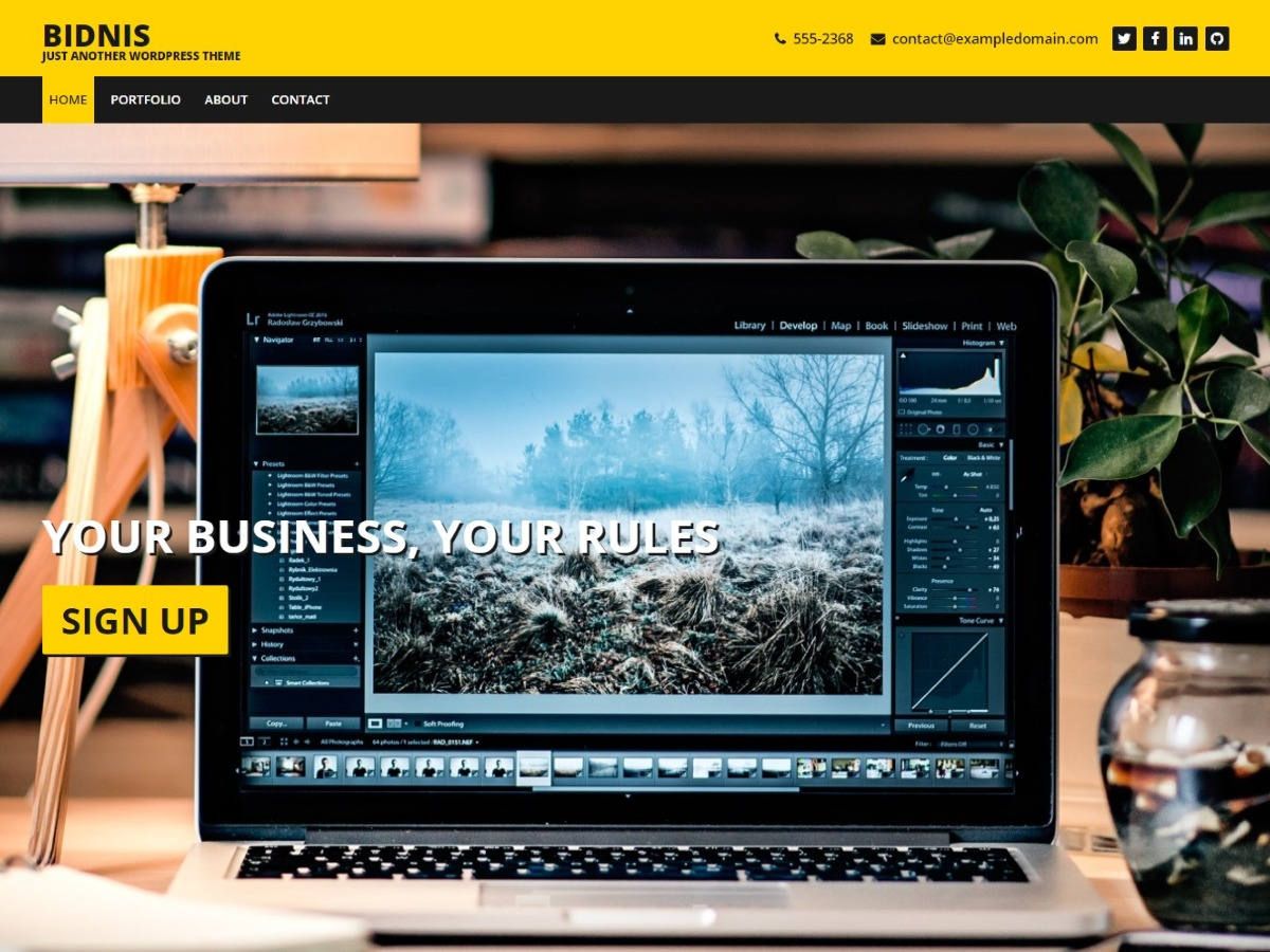 Bidnis free WordPress theme
