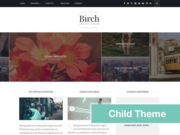 Birch Child Theme top WordPress theme