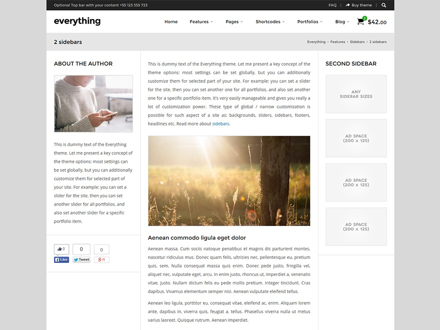 Everything premium WordPress theme