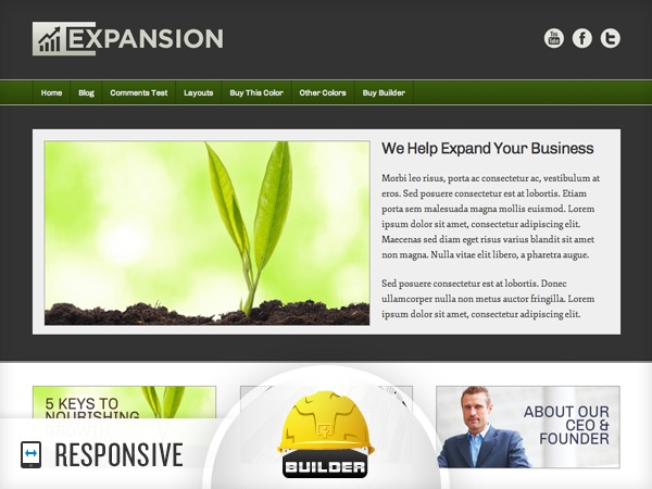 Expansion WordPress theme