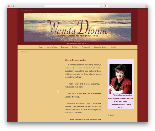 INOVADO top WordPress theme - wandadionne.com