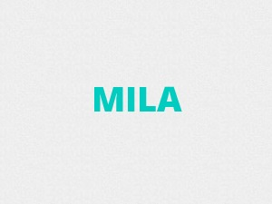 Mila WordPress blog theme