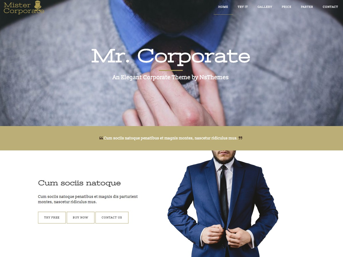 Mistercorporate WordPress template free download