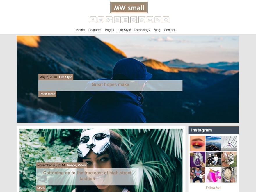 MW Small WordPress template free