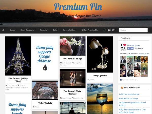 Premium Pin personal blog WordPress theme