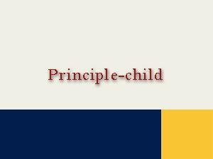 Principle-child WP theme