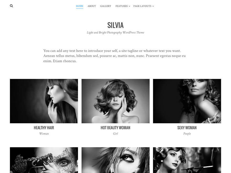 Silvia theme free download
