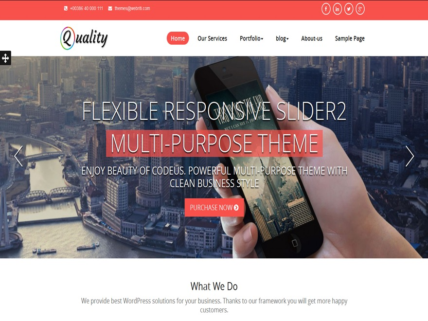 WordPress website template Quality-Pro
