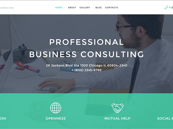 WordPress website template theme58090
