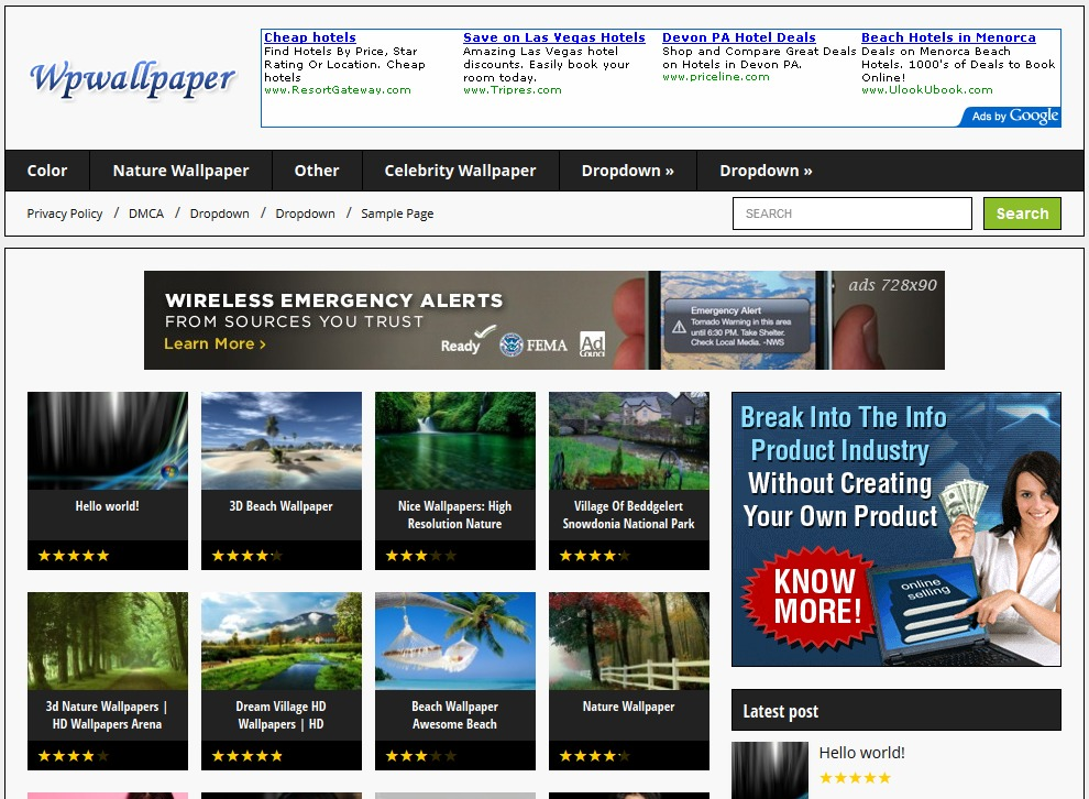 WordPress website template wpwallpaper