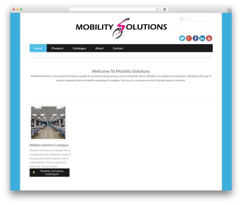 WP theme Function - wholesalehealth.co.za