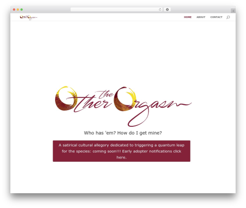 Divi theme WordPress - theotherorgasm.com