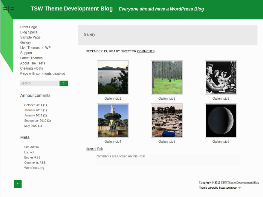 Medi company WordPress theme