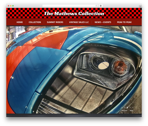 Radial Premium Theme top WordPress theme - mathewscollection.com