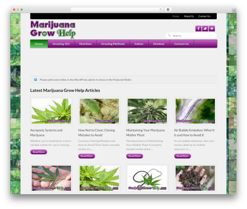 WordPress theme Function - marijuanagrowhelp.com