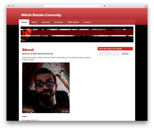 zeeSynergie top WordPress theme - mitchbanks.com