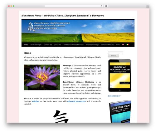 twentyten-child massage WordPress theme - moxatuina.com
